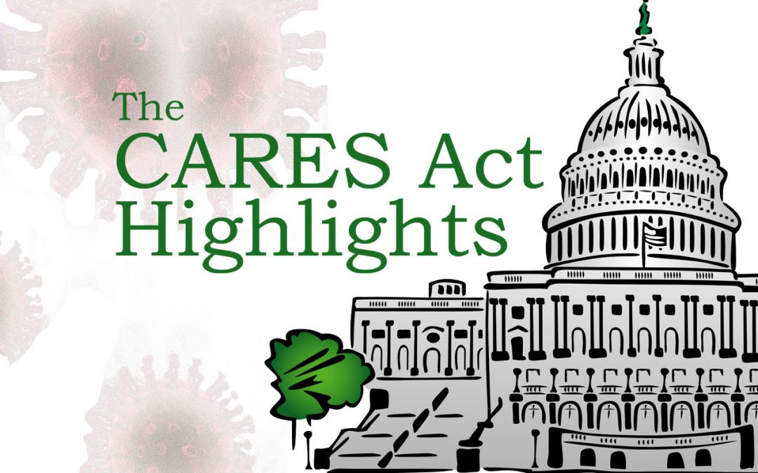 The Coronavirus Aid, Relief, and Economic Security Act (the CARES Act)